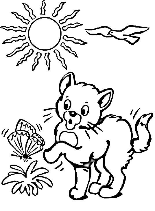 Coloriage et dessins gratuits Chat joue en plein air à imprimer