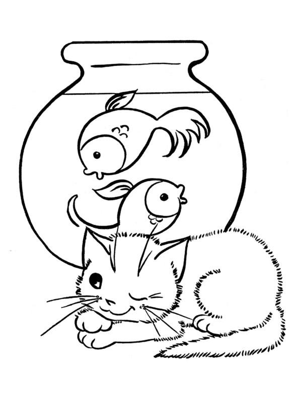 Coloriage chat observe les poissons dessin gratuit imprimer - Image de chat a colorier ...