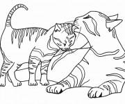 Coloriage et dessins gratuit Chaton et sa mère à imprimer