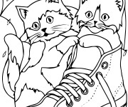 Coloriage Chatons dans une chaussure