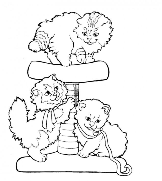 Coloriage et dessins gratuits Chatons s'amusent à la maison à imprimer