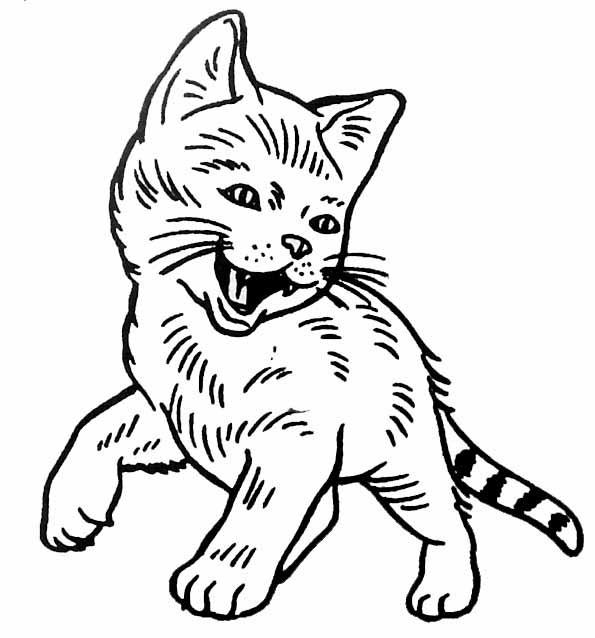 Coloriage et dessins gratuits Chatton heureux à imprimer