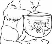 Coloriage et dessins gratuit Le chat et le poisson à imprimer