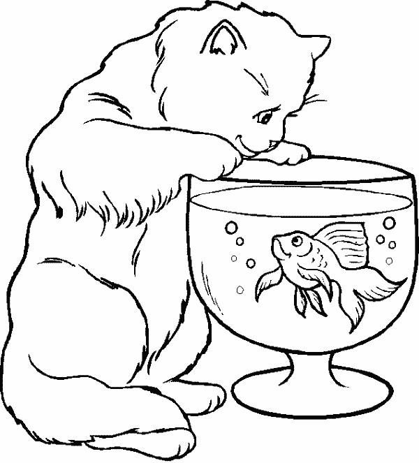 Coloriage le chat et le poisson dessin gratuit imprimer - Coloriage gratuit chat ...