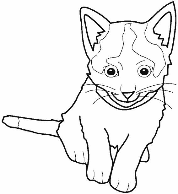 Coloriage et dessins gratuits Le petit Chat facile à imprimer