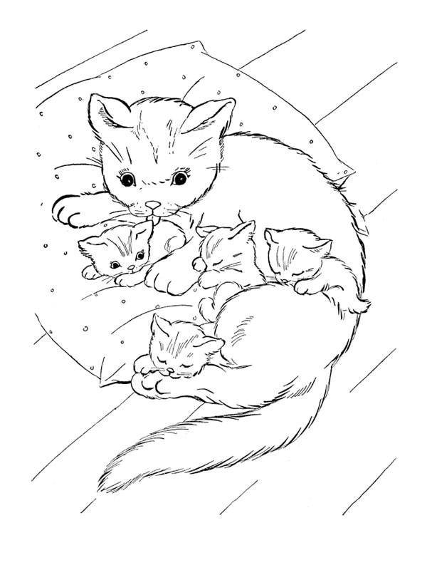Coloriage une chatte soigne ses chatons dessin gratuit - Chat facile et gratuit ...