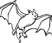 Coloriage et dessins gratuit Chauve-souris 6 à imprimer
