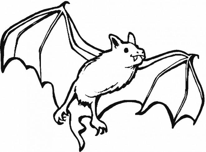 Coloriage et dessins gratuits Chauve-souris 6 à imprimer