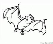 Coloriage dessin  Chauve-souris 7