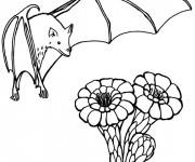 Coloriage Chauve-souris et les fleurs