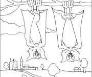 Coloriage et dessins gratuit Chauves-souris inversés à imprimer