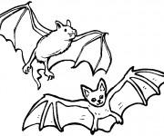 Coloriage et dessins gratuit Des chauves-souris à imprimer