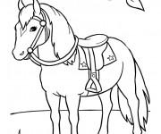 Coloriage dessin  Cheval 1