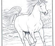 Coloriage dessin  Cheval 10