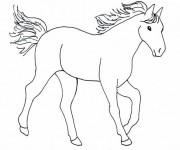 Coloriage dessin  Cheval 16
