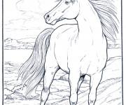 Coloriage et dessins gratuit Cheval à la crinière dans le vent à imprimer