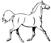 Coloriage et dessins gratuit Cheval au trot à imprimer