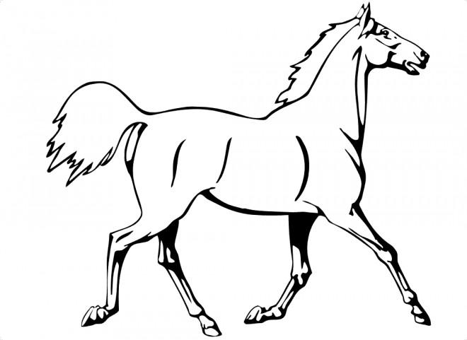 Coloriage et dessins gratuits Cheval au trot à imprimer