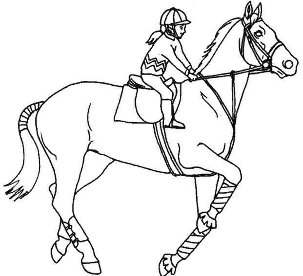 Coloriage cheval avec cavali re dessin gratuit imprimer - Coloriage chevaux ...