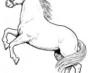 Coloriage et dessins gratuit Cheval cabré couleur à imprimer