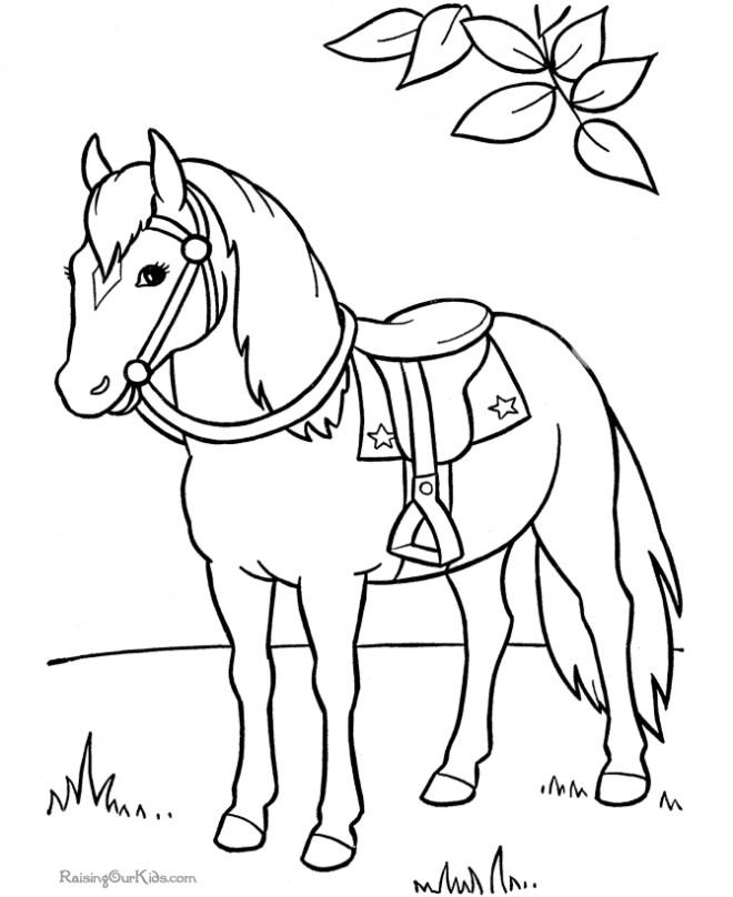 Coloriage et dessins gratuits Cheval dans la nature à imprimer