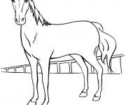 Coloriage Cheval de course dessin en ligne