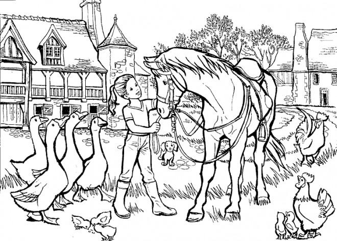 Coloriage et dessins gratuits Cheval de ferme à imprimer