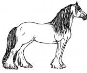Coloriage et dessins gratuit Cheval de trait Ardennais à imprimer