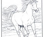 Coloriage et dessins gratuit Cheval dessin noir et blanc à imprimer