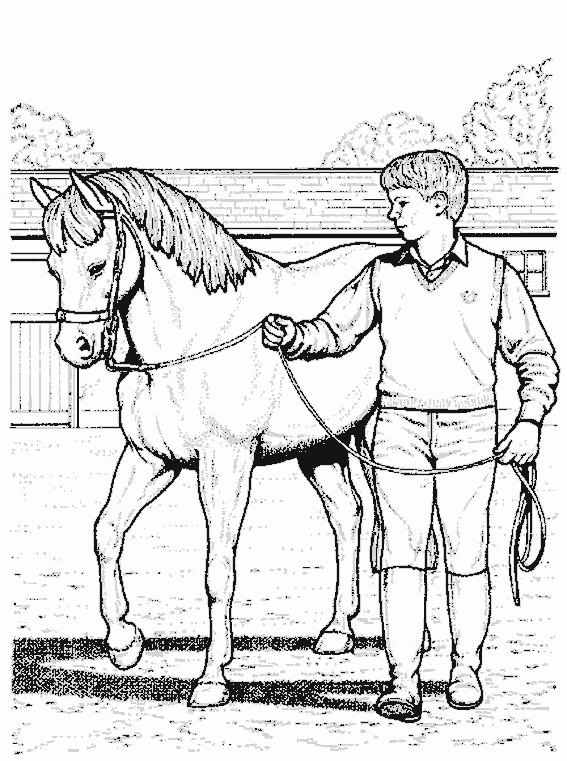 Coloriage Cheval et enfant au crayon dessin gratuit à imprimer