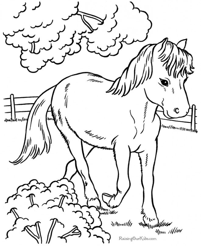 Coloriage et dessins gratuits Cheval et le jardin à imprimer