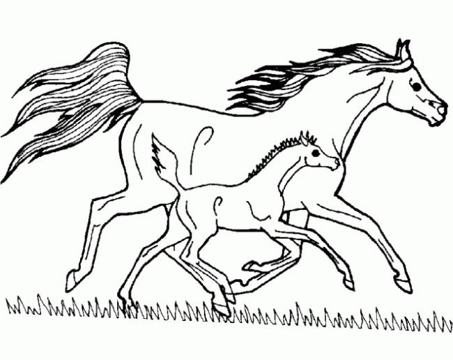 Coloriage cheval et poulain au galop dessin gratuit imprimer - Coloriage cheval et poulain ...