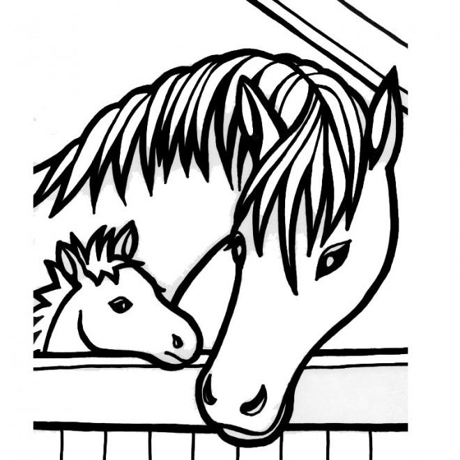 Coloriage cheval et poulain dans l 39 curie dessin gratuit imprimer - Chevaux dessins ...
