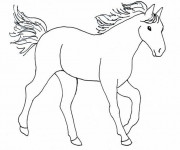 Coloriage Cheval facile