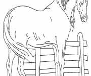 Coloriage Cheval facile maternelle