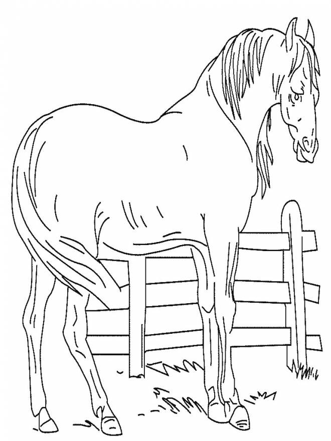 Coloriage et dessins gratuits Cheval facile maternelle à imprimer
