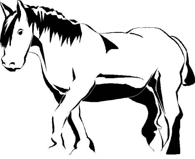 Coloriage cheval image noir et blanc dessin gratuit imprimer - Dessin noir et blanc animaux ...