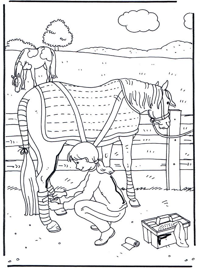 Coloriage et dessins gratuits Cheval pour fille à imprimer