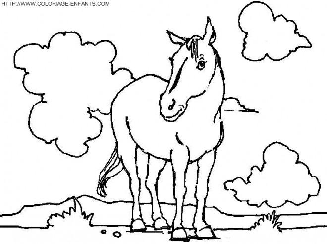 Coloriage cheval sauvage dessin gratuit imprimer - Coloriage cheval sauvage ...