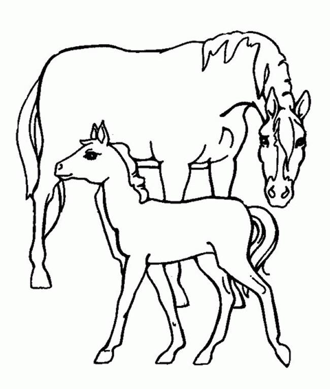 Coloriage cheval soigne son poulain dessin gratuit imprimer - Dessin de poulain a imprimer ...
