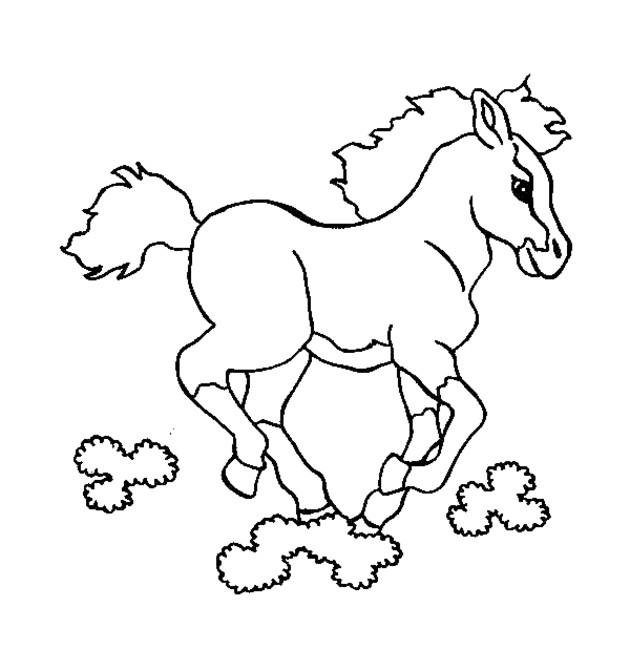 coloriage cheval spirit dessin gratuit à imprimer