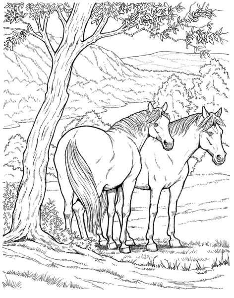 Coloriage Chevaux dans la forêt dessin gratuit à imprimer