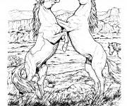 Coloriage Dessin au crayon de deux chevaux