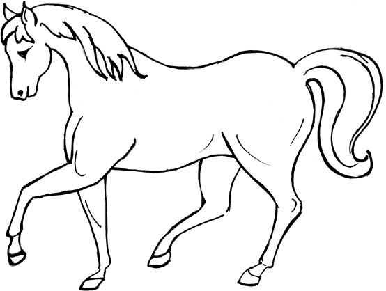 image cheval dessin