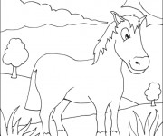 Coloriage Dessin simple de Cheval