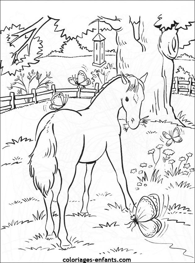 Coloriage et dessins gratuits Poulain dans le jardin à imprimer