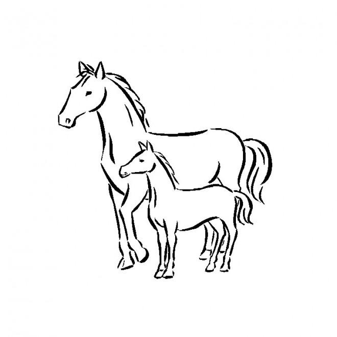 Coloriage poulain et m re simple dessin gratuit imprimer - Dessins de chevaux facile ...