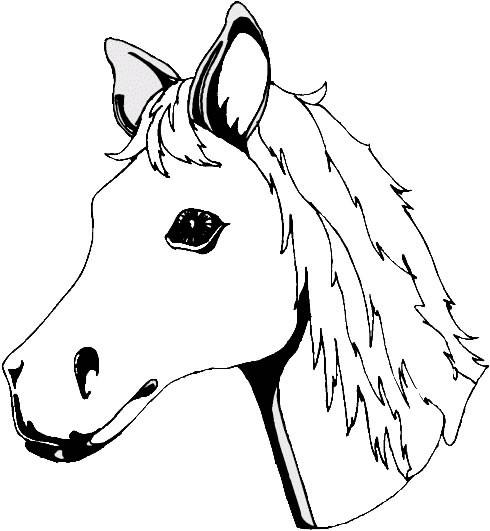 Coloriage t te de cheval dessin gratuit imprimer - Coloriage poulain ...