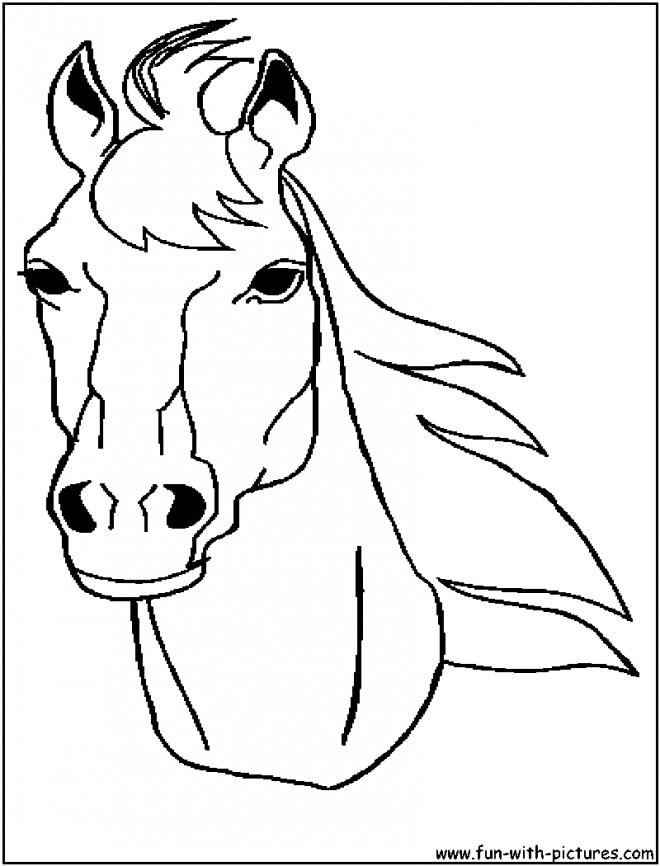 Coloriage Tête De Cheval Merens Dessin Gratuit à Imprimer
