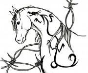 Coloriage Un joli cheval